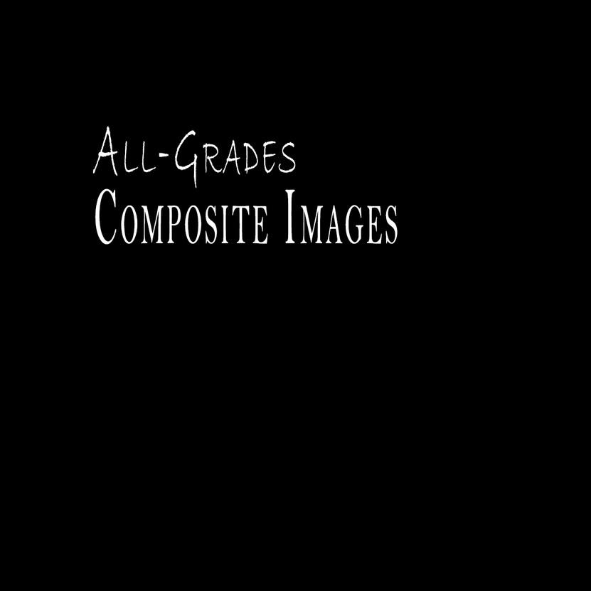 Composite Template.jpg