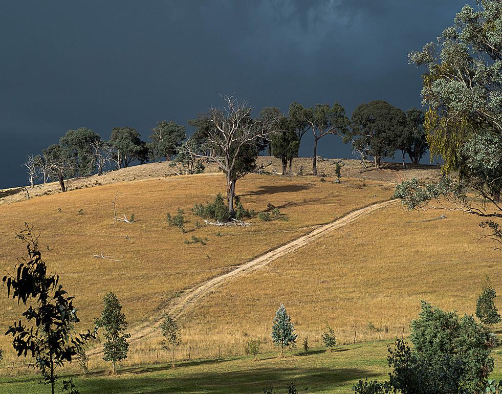 Di Wyatt - storm coming MERIT.jpg