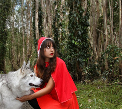 PE_2_19_red riding hood and the wolf
