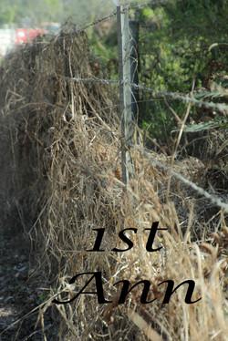 Fences 1st Ann