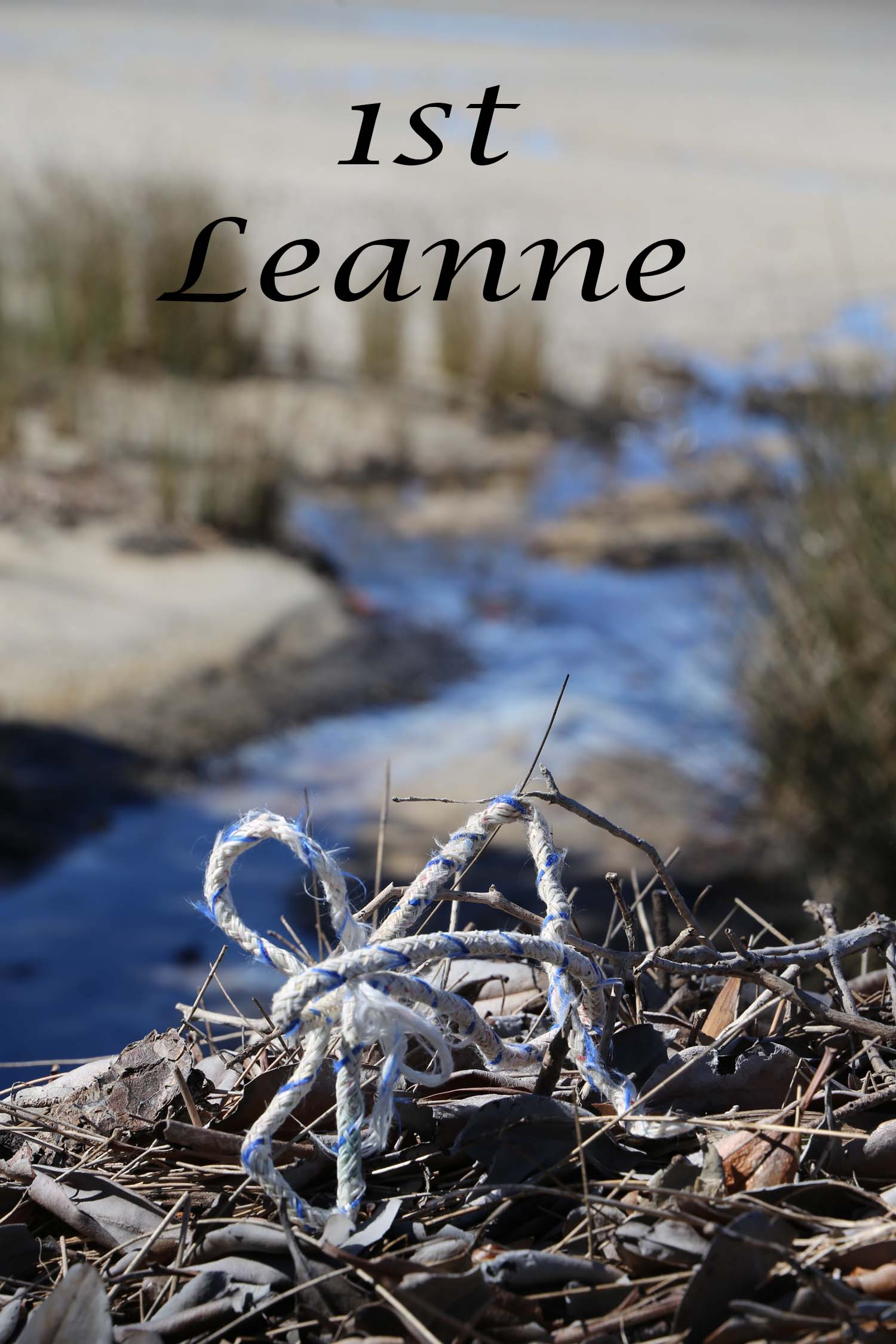 Environ Trash 1st Leanne