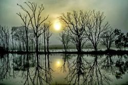 Alan Bellinger - Sunrise Over Lake