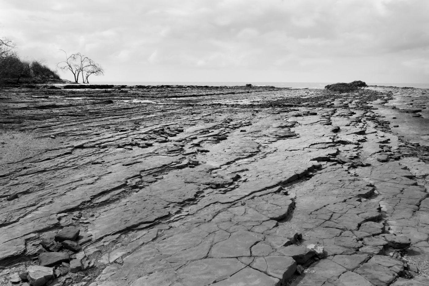 Celina Hurworth   Rugged Rocks
