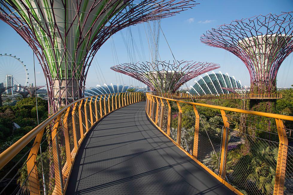 Warren Thomson - Singapore Steel Walk MERIT