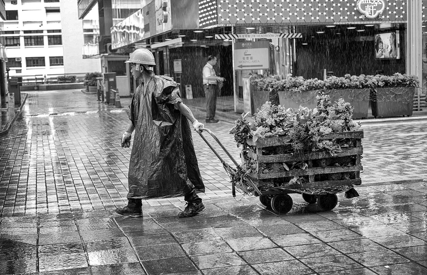 Margaret Kossowski - WORKING IN THE RAIN
