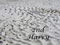Sand-Patterns-2nd-Harryb