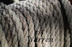 Texture-1st-Warrenb