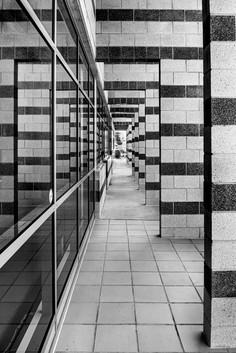 Rosemarie Edwards - The passageway HONOUR.jpg