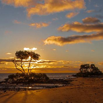 Warren Thomson - Sunset Point Vernon HONOUR