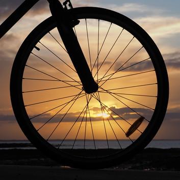 Lynette Webb - Riding into the sun (HONOUR)