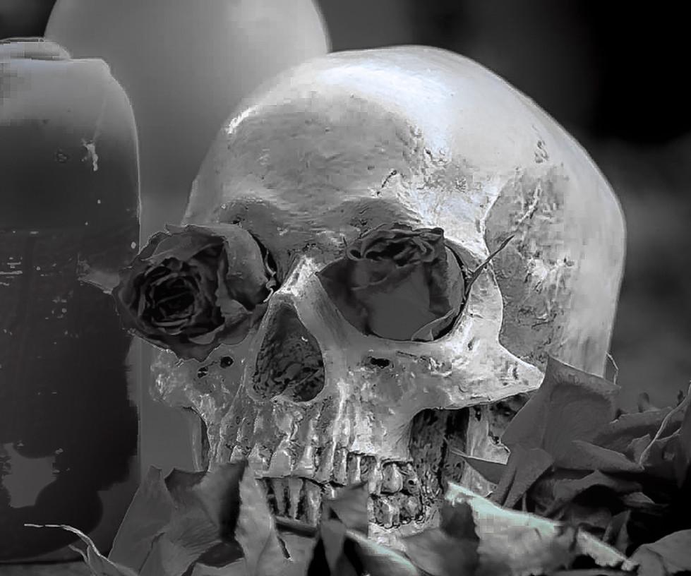 Amanda Keys - Skull MERIT