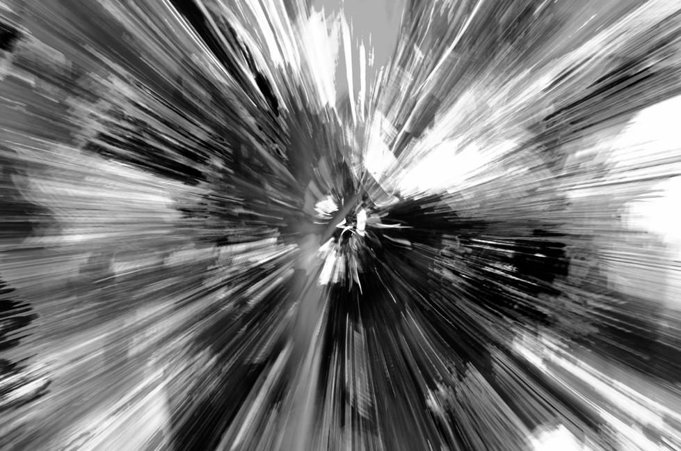 Janelle Hultgren | Spiral Palm