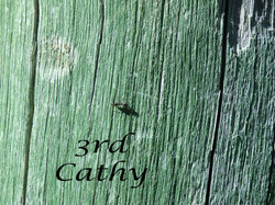 Insect-3rd-Cathy-b