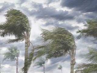 When Strong Winds Blow: We're Secure in His Care By Debbie McDaniel