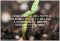 Seed-quote-Henry-David-Thoreau-wm