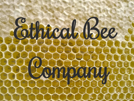 Reflections on last Saturday's bee keeping course