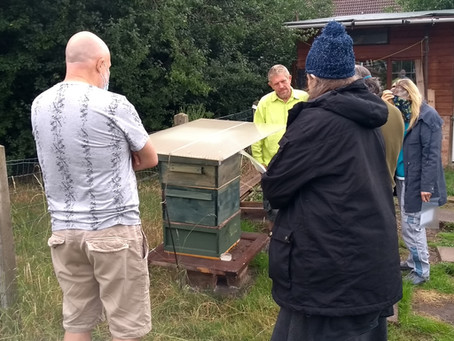 It's very quiet at the apiary