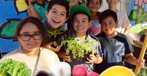 3 Misleading Symptoms of Healthy and Sustainable Youth Ministries