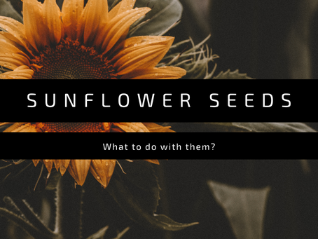 What to do with Sunflower seeds?