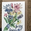 Thumbnail: Wildflower Seed cards