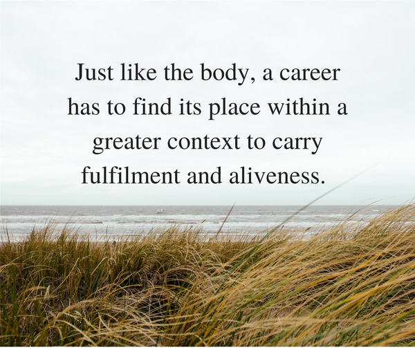 Anatomy of a career and how to avoid confusion