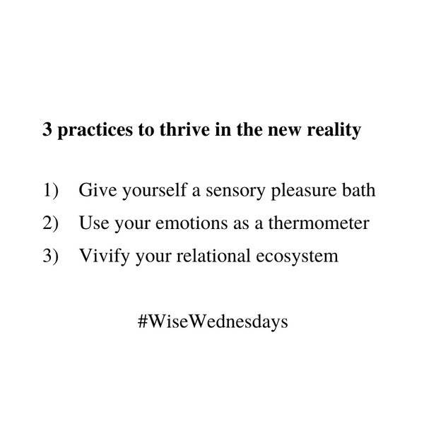 3 practices to thrive in the new reality [Wise Wednesdays]