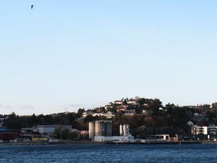 Høringsuttalelse fra Randesund bydelsråd med flere angående Kongsgård-Vige havn