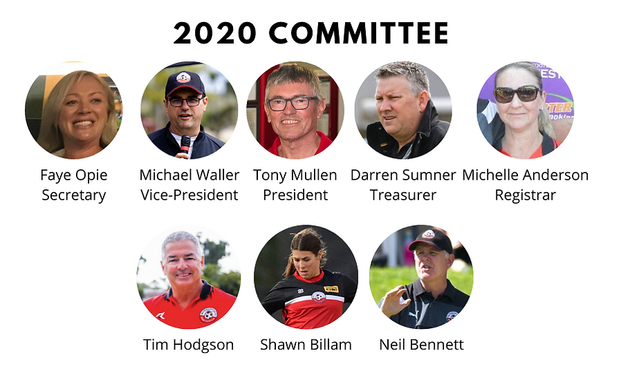 2020 Committee.png