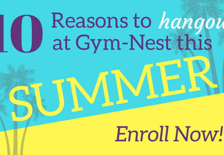 10 Reasons to Hangout at Gym-Nest this Summer!