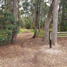 The Tasmanian Trail