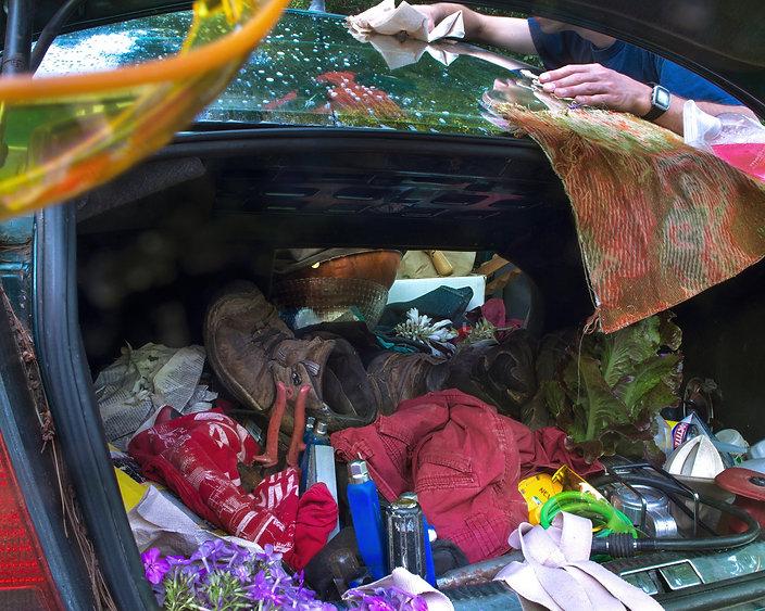 Car, fabric,window, lettuce, green, nature, guy, hand