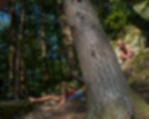 Woods, men, swimming, sun, laying, towel, tree, moss