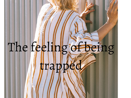 Introducing Being Trapped in House in A new Light