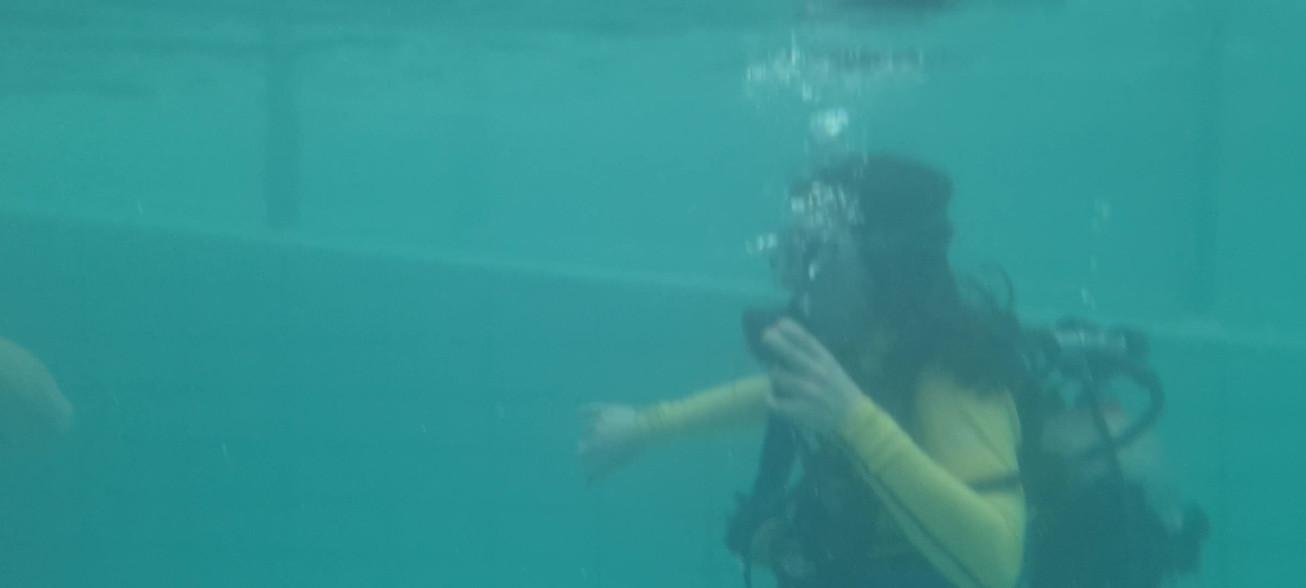 Curso mergulho 14.mp4