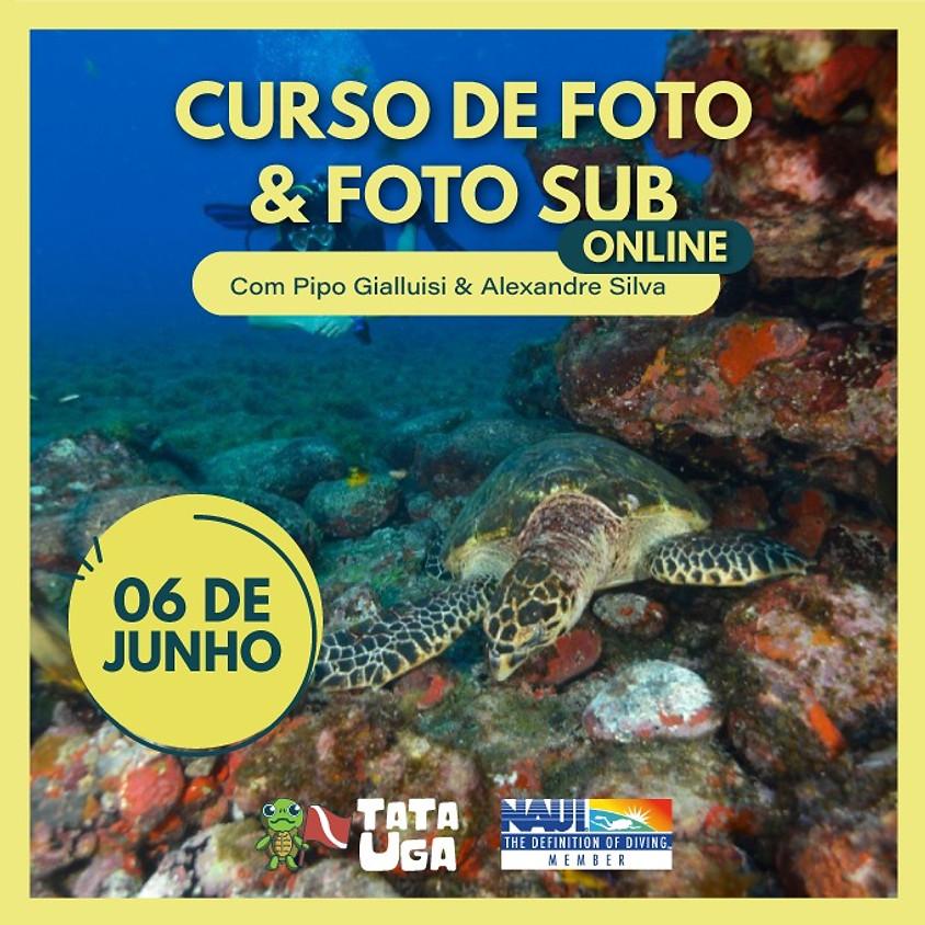 Curso online de Foto & Foto Sub