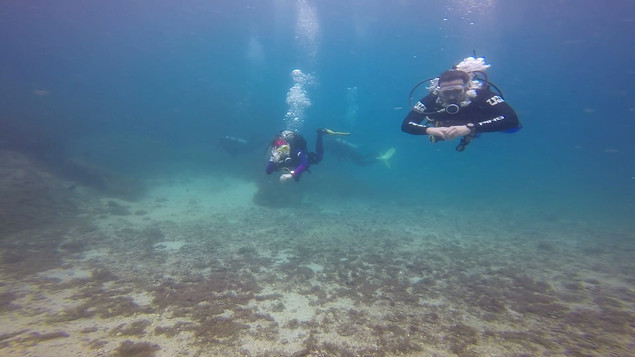 Open water fev 21 20.mp4