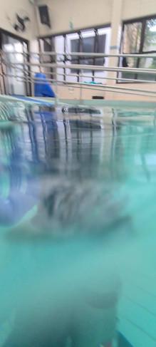 Curso mergulho 12.mp4