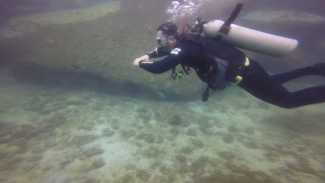 Open water fev 21  10.mp4