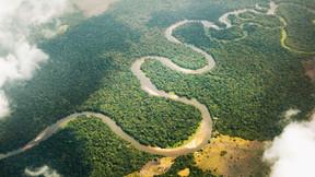 RDC Le Deuxième Poumon de la Planète
