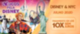 Mini Banner Disney NYC.png