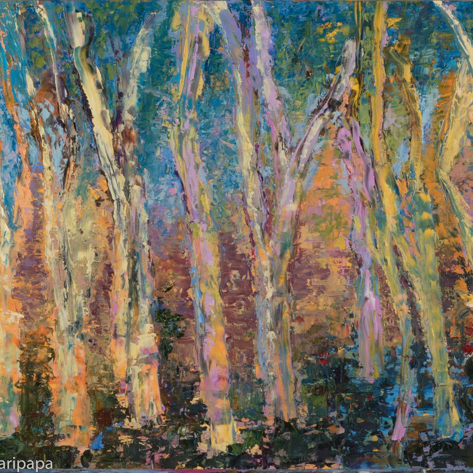 Trees 24x18