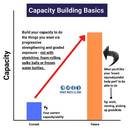 Capacity building Basics.png