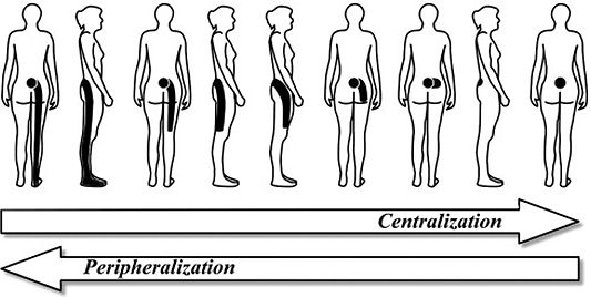 Back Pain Centralisation Physio Penrith.