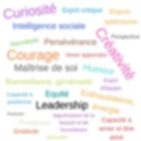 24 forces psychologie positive