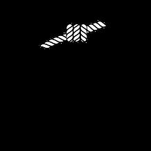 logo black - stap i kanap.png