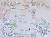 Rallye Smart 2010.JPG