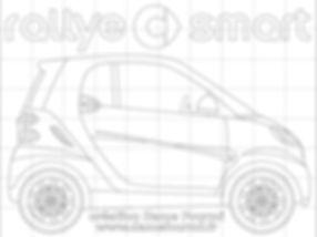 Rallye Smart 2010 puzzle.jpg