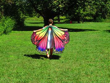 Alex the Butterfly.JPG