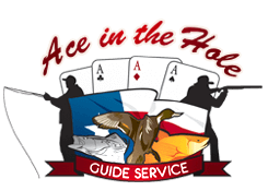 ace in the hole logo.png