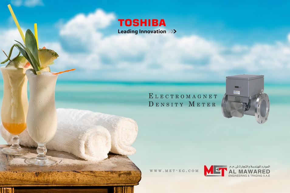 TOSHIBA ELECTROMAGNET DENSITY METER